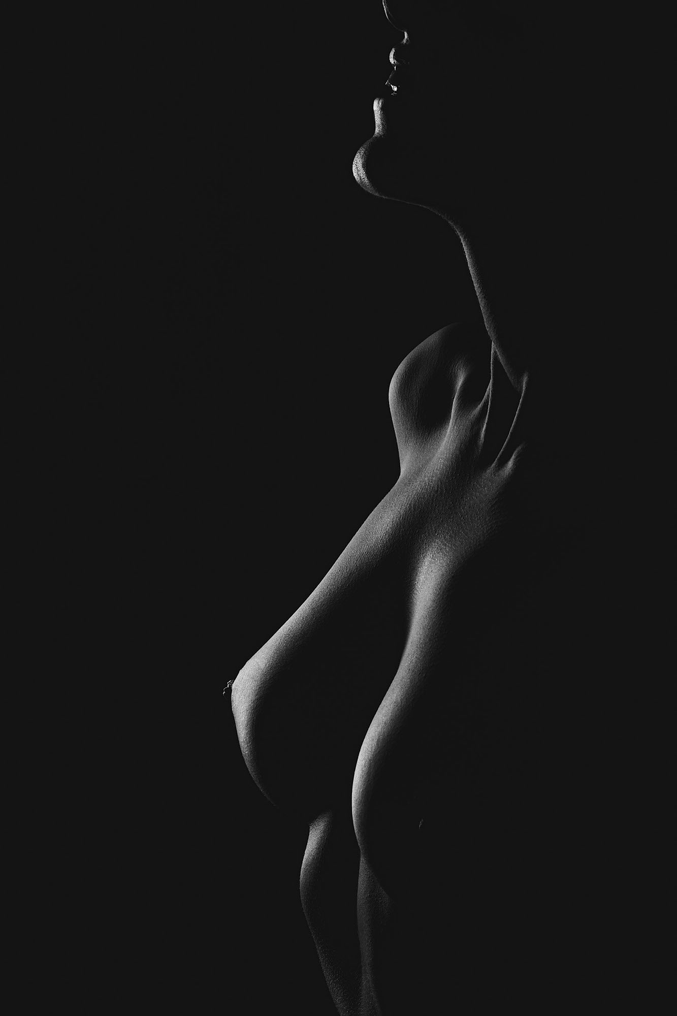 art-nude-black-and-white-silhouette-breast